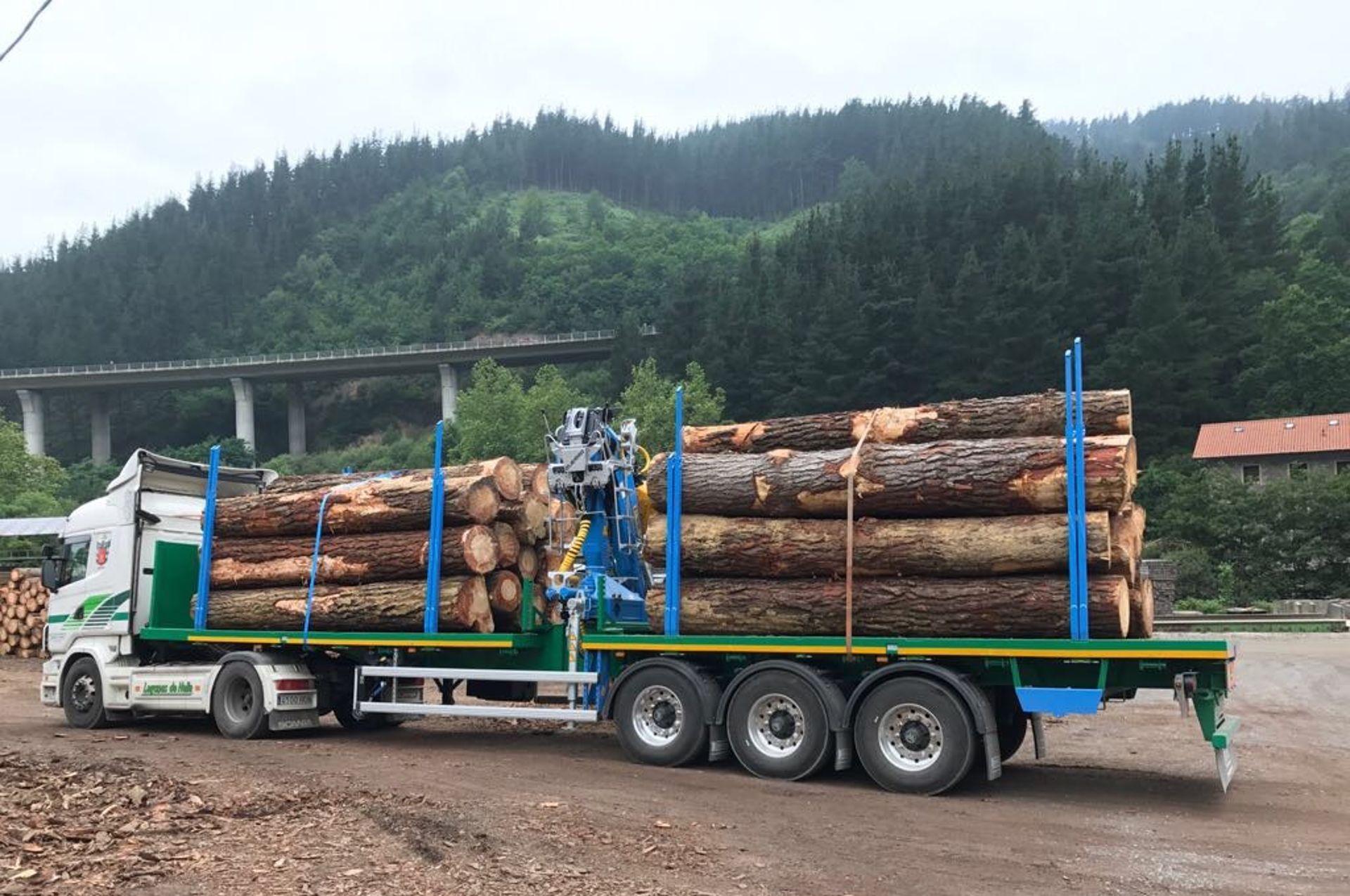Plataforma forestal Maquinaria Camara 7